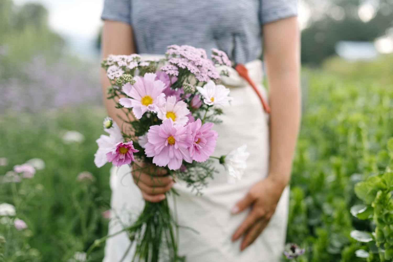 Jimena-Peck-Denver-Lifestyle-Editorial-Photographer-Native-Hill-Farm-Flowers-Pink-Daisies