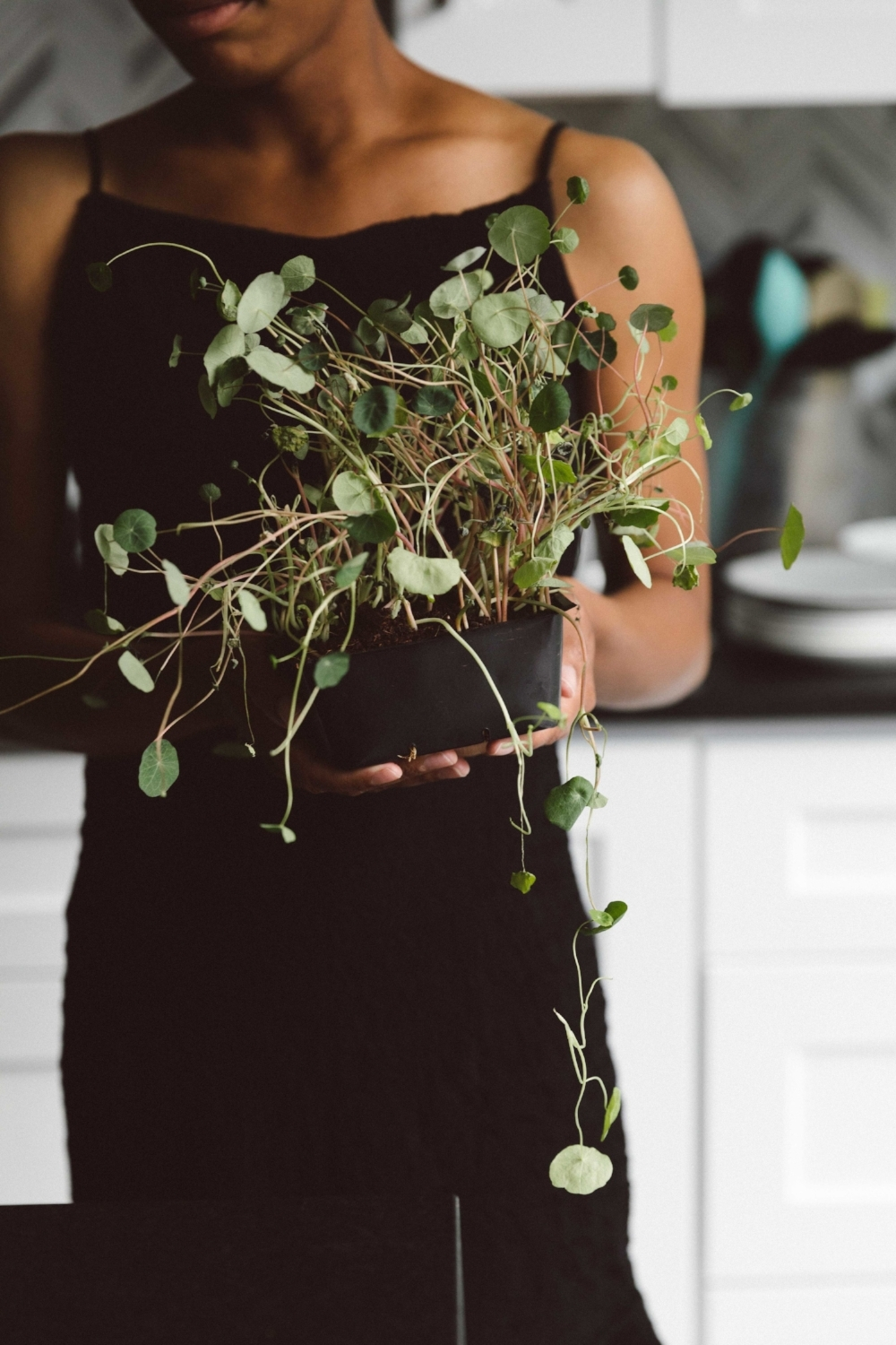 Jimena-Peck-Denver-Lifestyle-Editorial-Photographer-Thistle-And-Mint-Grabbing-Sprouts