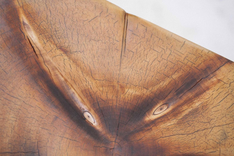 Jimena-Peck-Denver-Lifestyle-Editorial-Photographer-Colorado-Reclaim-Wood-Details-Close-Up