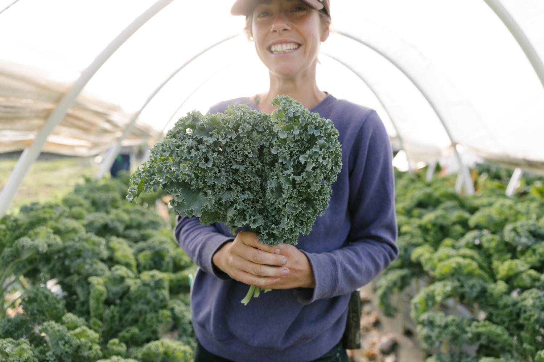Jimena-Peck-Denver-Lifestyle-Editorial-Photographer-Native-Hill-Farm-The-Veggies-Grabbing-Kale-Bunch