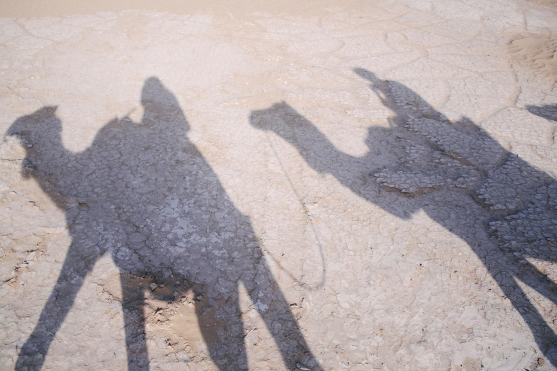 Jimena Peck Denver Lifestyle Editorial Photographer Camels Shadow