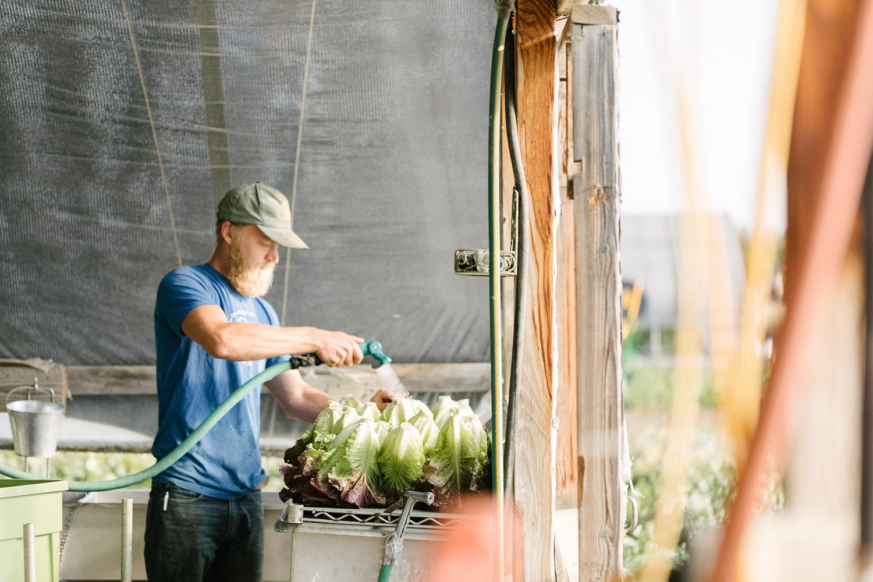 Jimena-Peck-Denver-Editorial-Commercial-Lifestye-Photographer-Farms-16.jpg