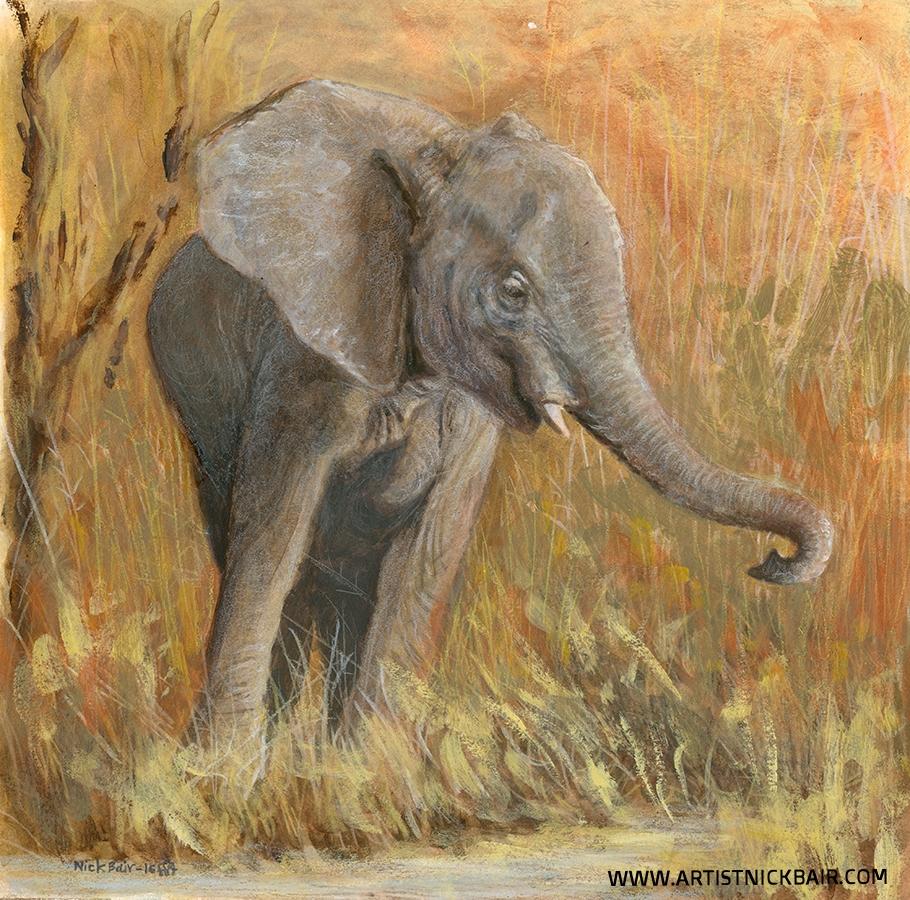 Juvenile Elephant - SOLD
