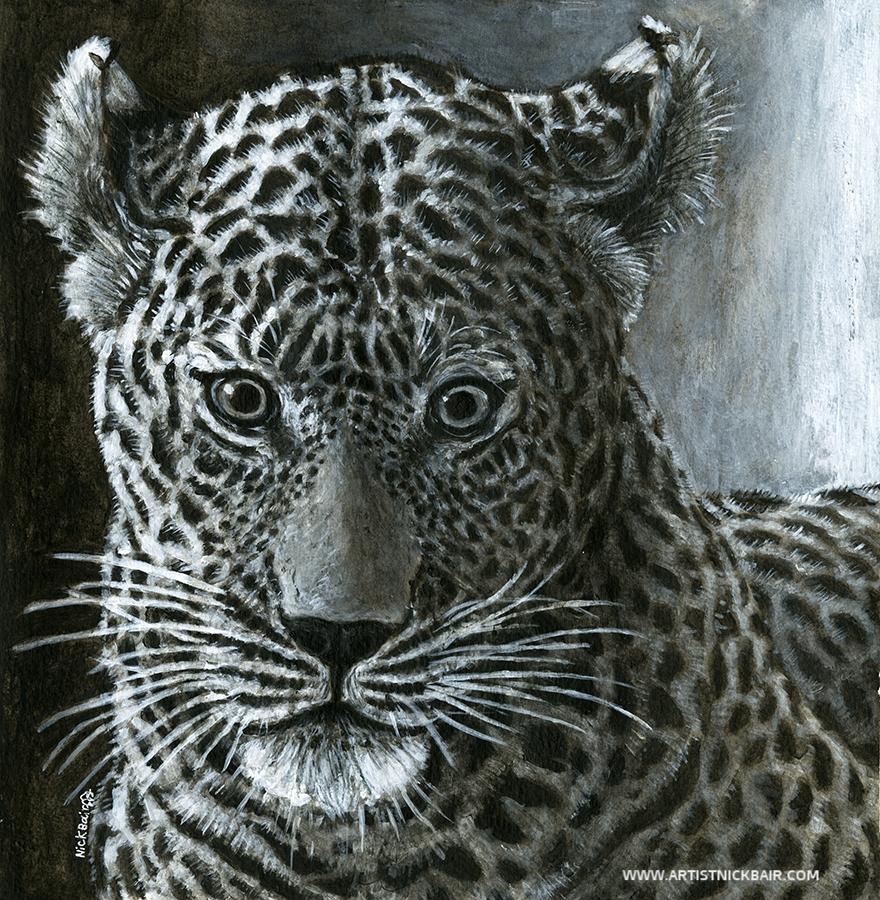 Leopard Stare Down - SOLD
