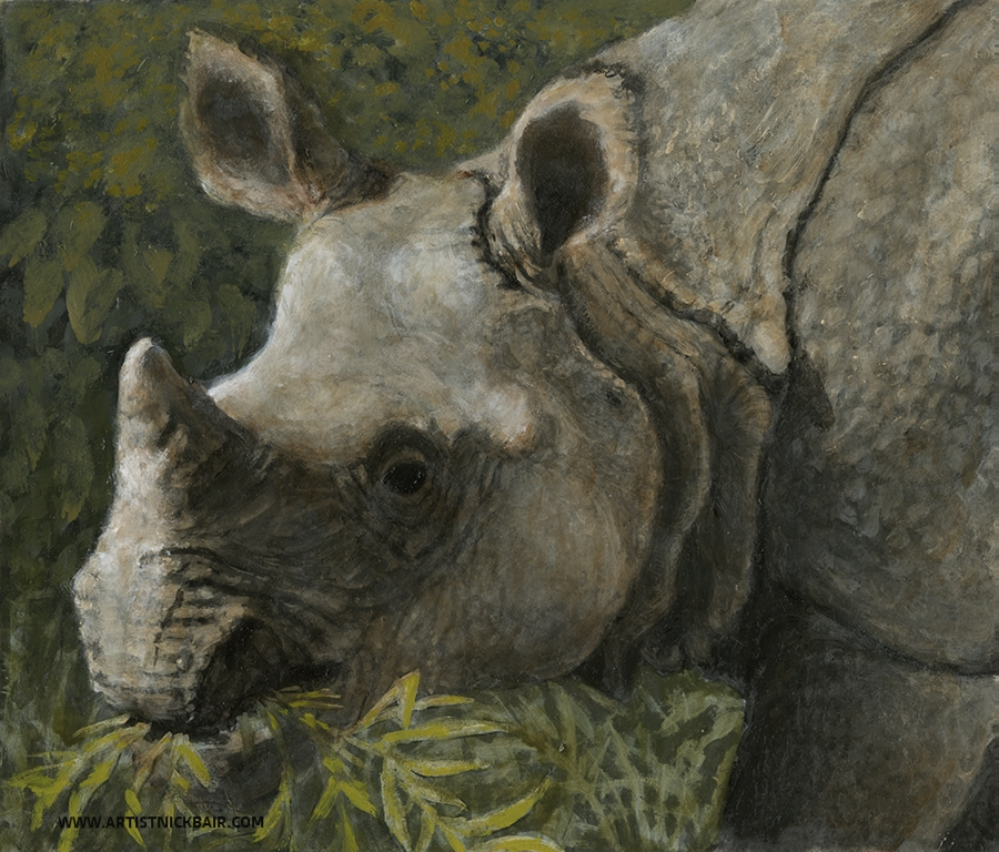 Indian Rhinoceros - Oil Study