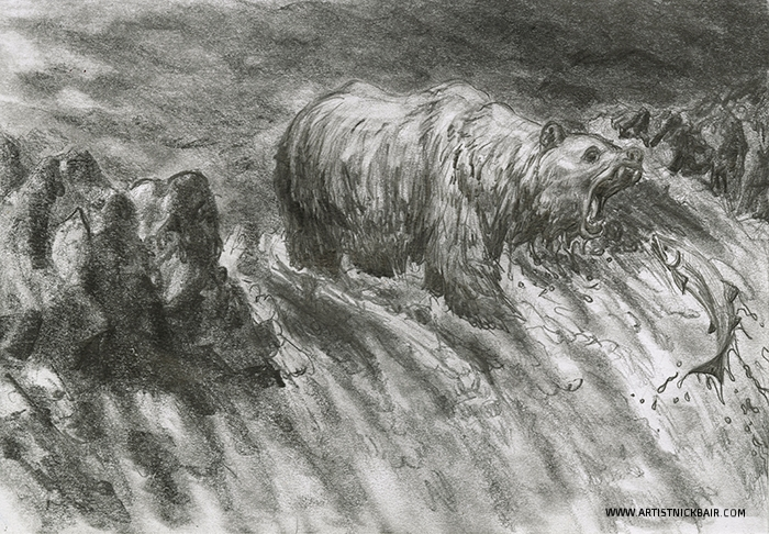 Bear and Salmon Run