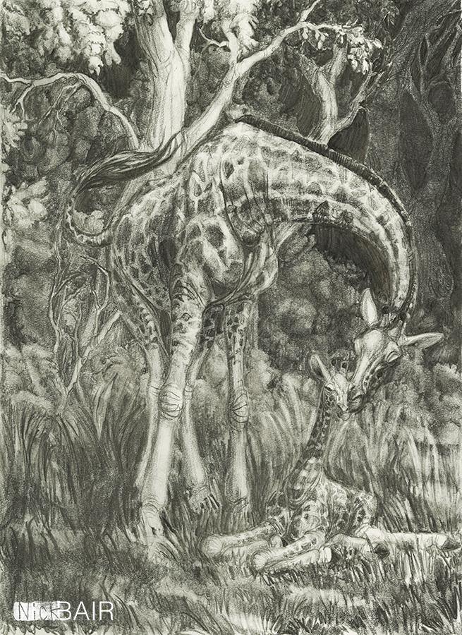 Nuzzling Giraffes