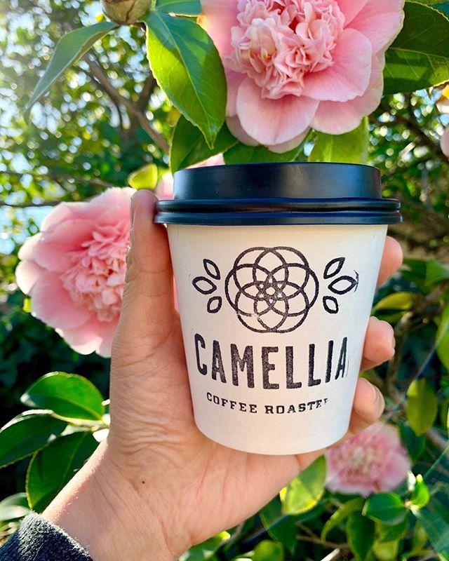 It's a beautiful morning 🎶 🌸 . . #camelliacoffeeroasters #sacramento #midtownsac #walpublicmarket #rstreet #sacramentocoffee #craftcoffee
