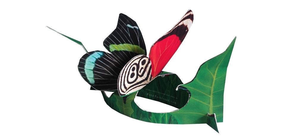 Cramer's 88 Butterfly