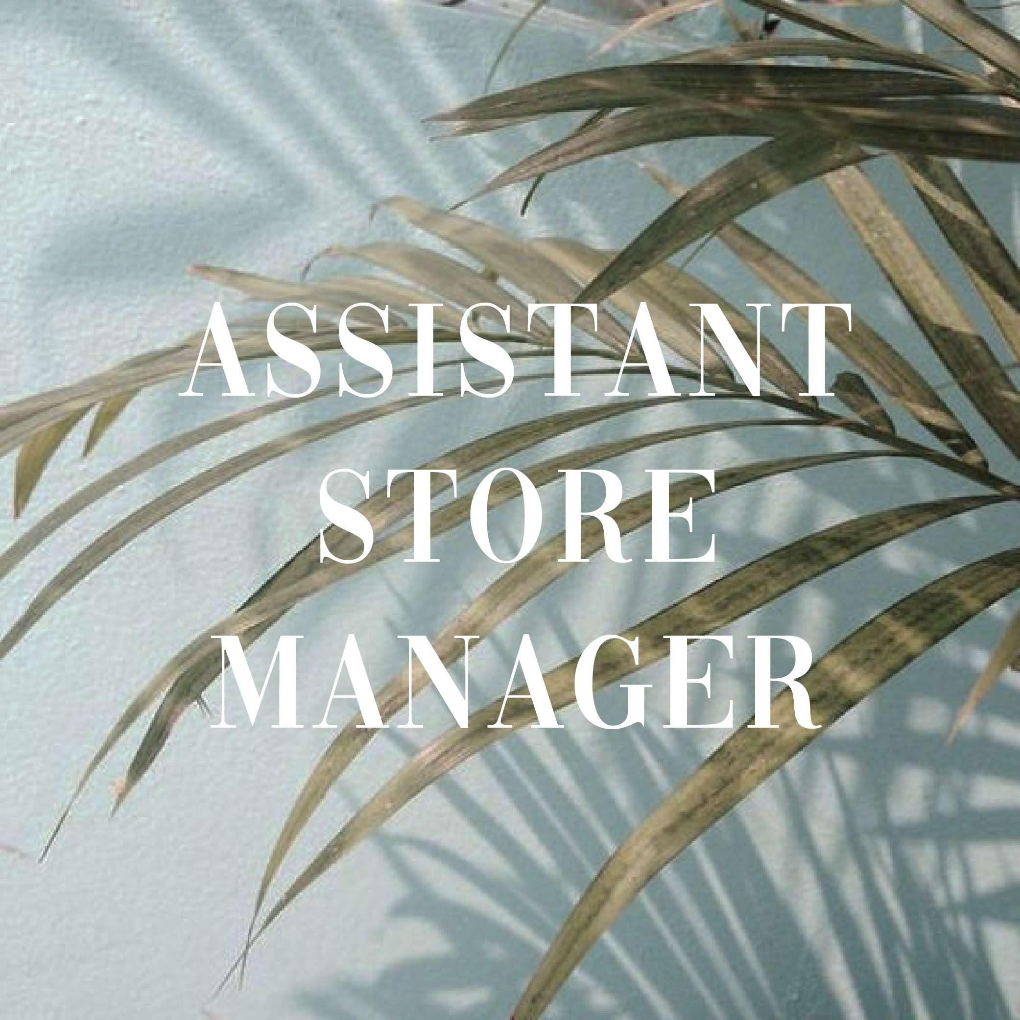 AssistantStoreManagerIcon.jpg