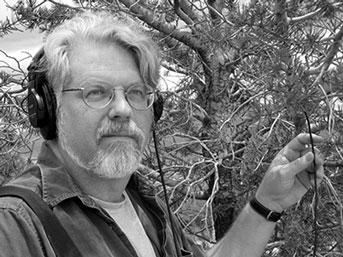 UC Santa Cruz music professor David Dunn listening to bark beetles.  Credit: Courtesy of David Dunn