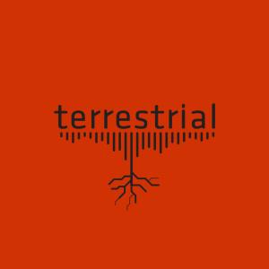 TERRESTRIAL_1_ckqmat.png