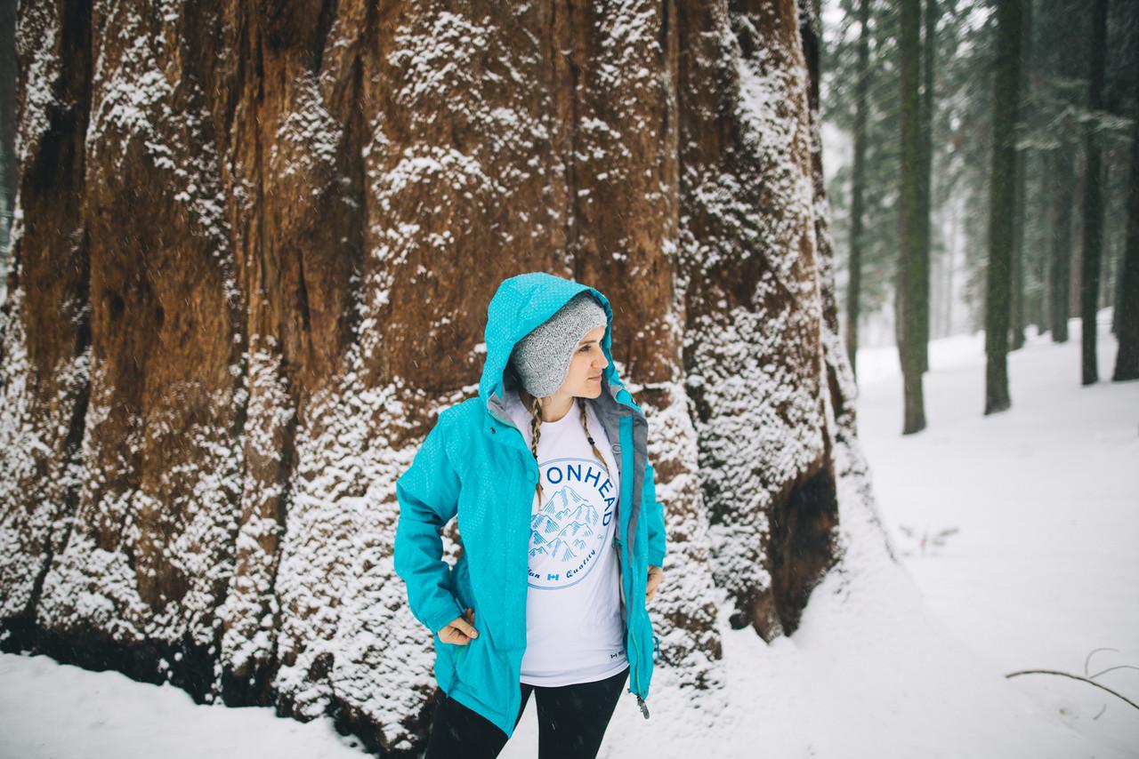 DecemberSequoiaSnow157-X2.jpg