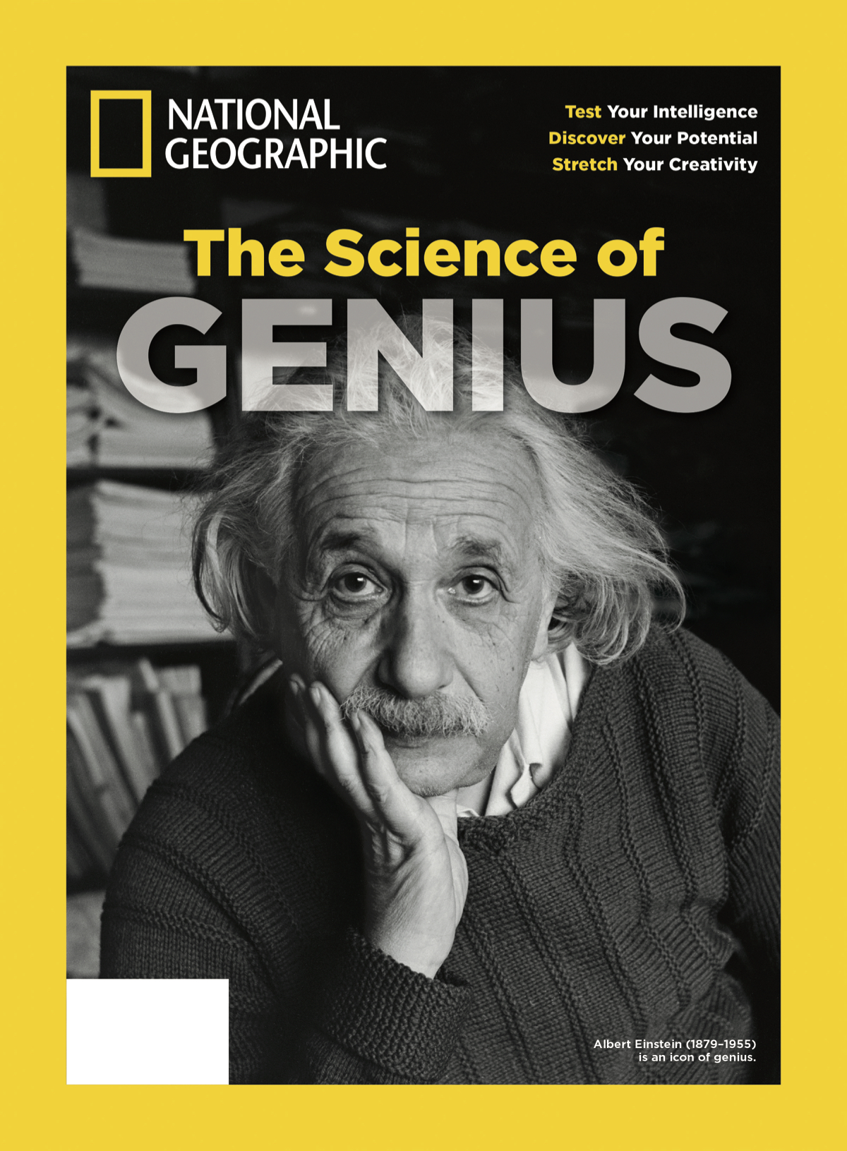 Genius Bookazine Cover jpeg.jpg