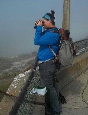 Heather Robinson conducts the Alcatraz seabird research.