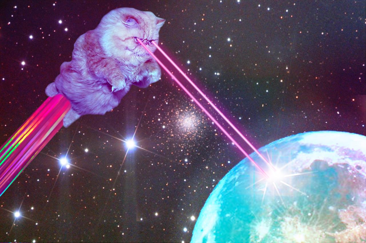galaxy cat.jpg