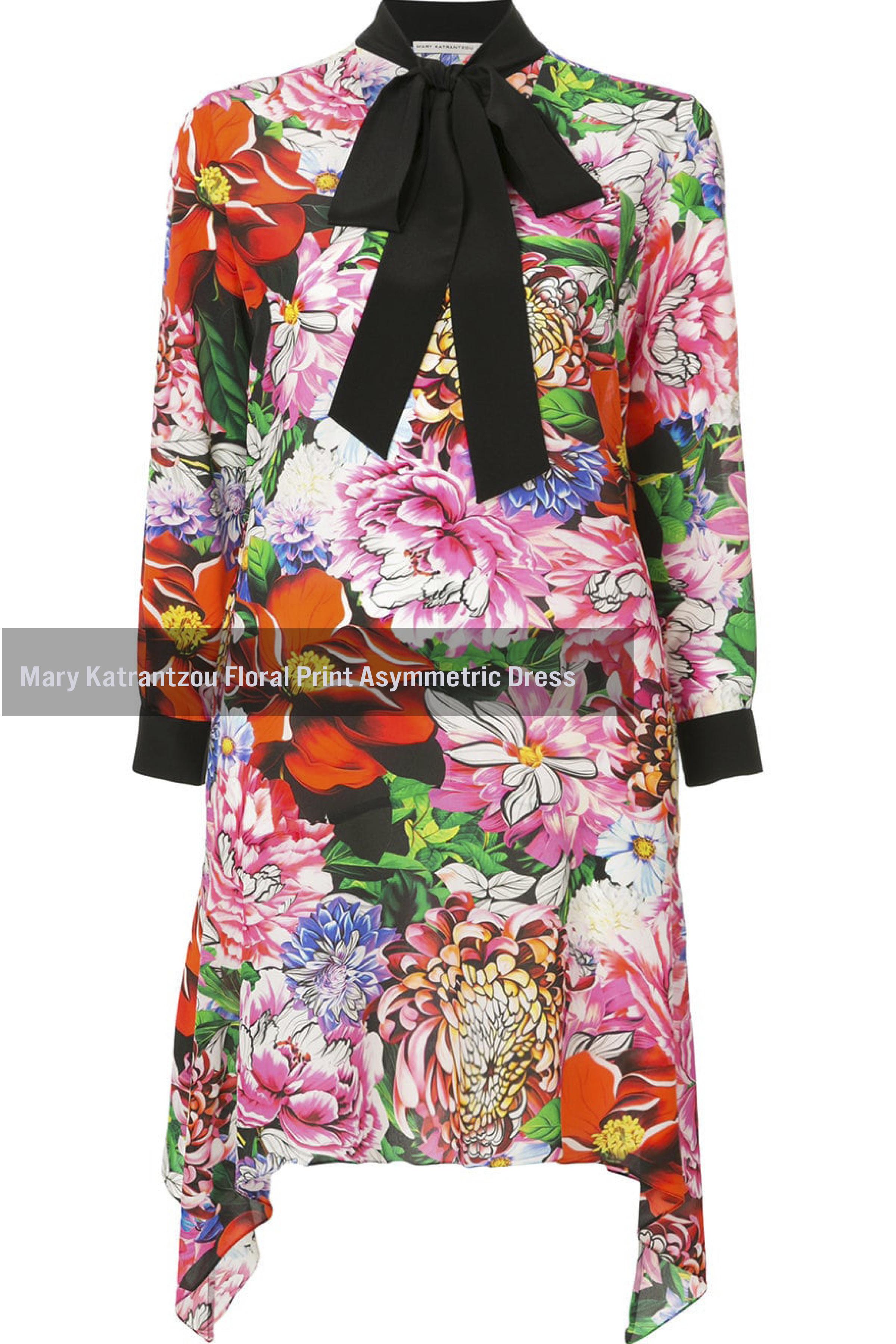 Mary Katrantzou Floral Print Asymmetric Dress
