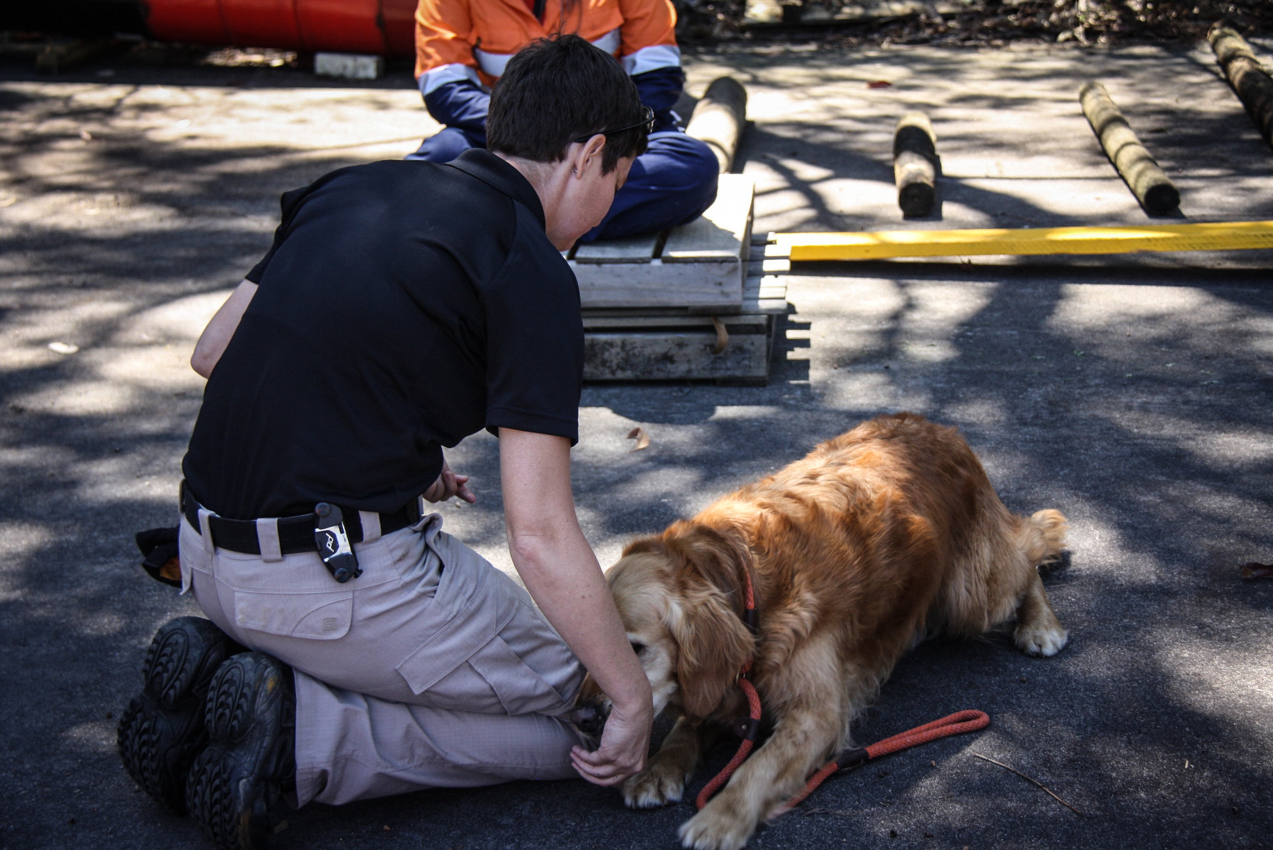 Instructor Tracy Darling demonstrates exercises including the impact of proper form to improve fitness in working dogs with K9 Will (SARDA)