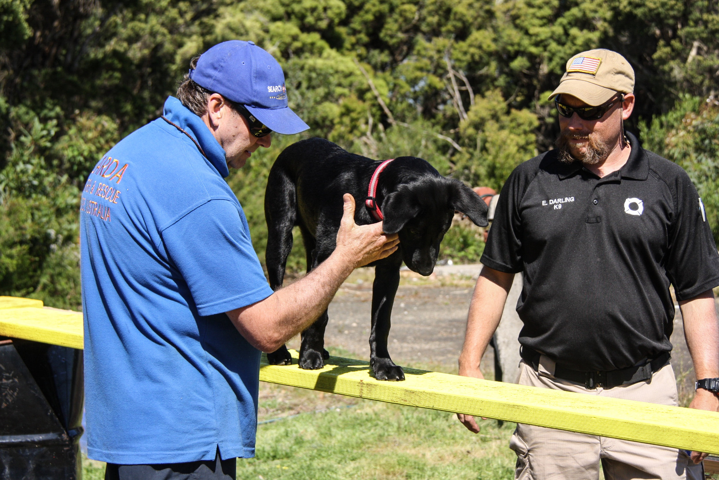 Handler Andrew Cowan guides K9 Ari (SARDA) through the agility course with instructor Eric Darling