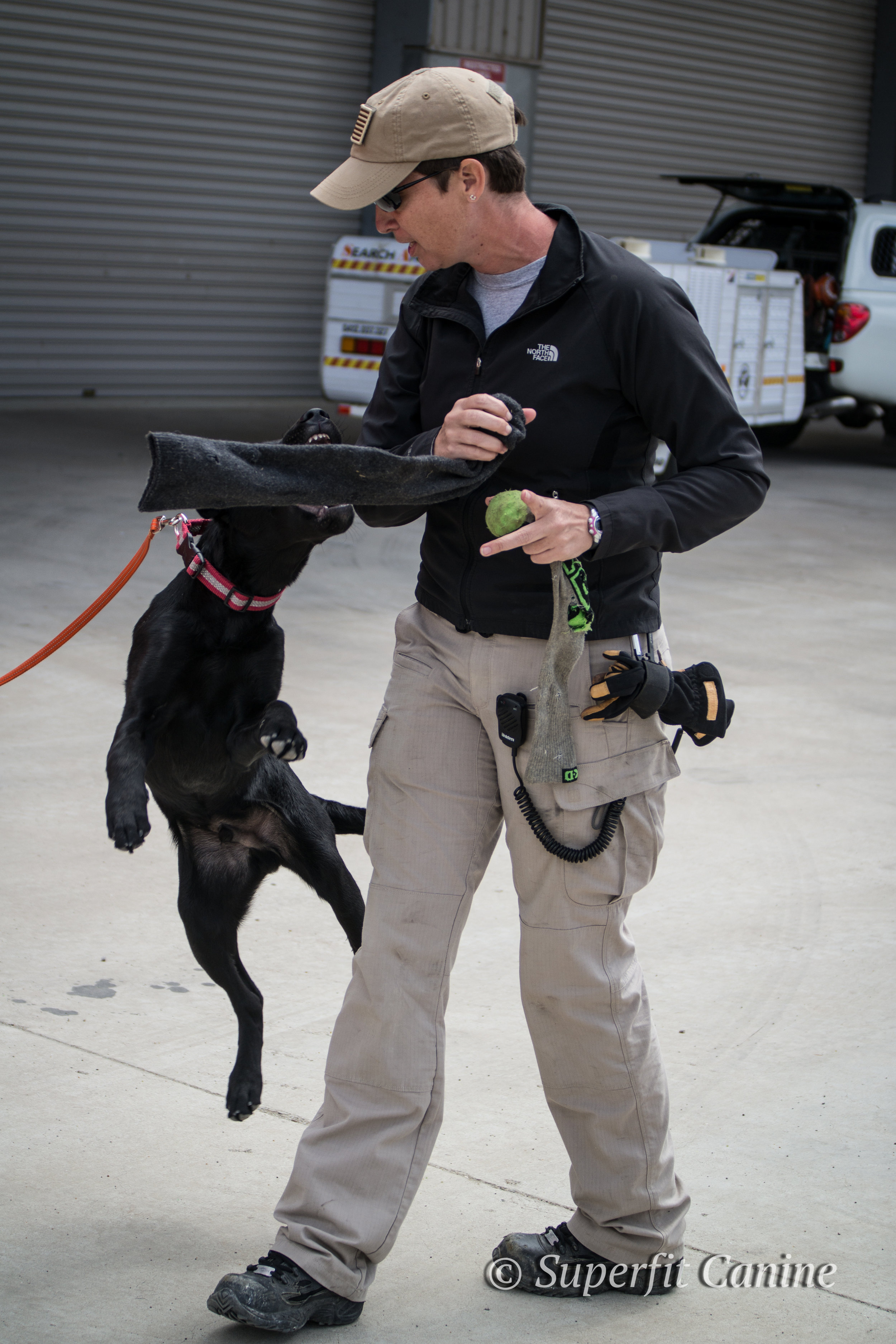 Instructor Tracy Darling demonstrates techniques in puppy engagement with K9 Ari (SARDA)