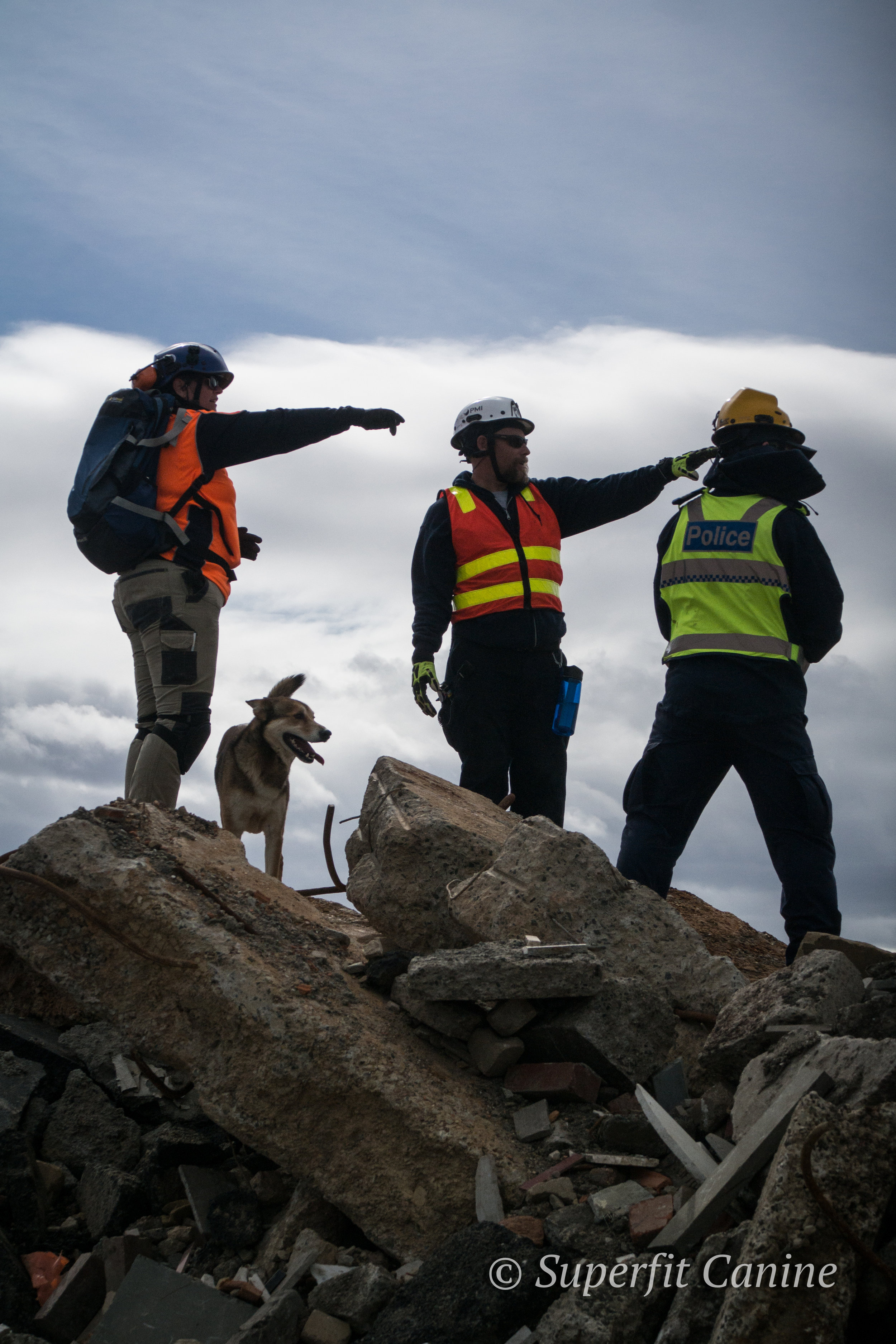 Instructor Eric Darling, handler Adele Jago and Sgt. Claude Silinzieds (Victoria Police Dog Squad) discuss search strategy as K9 Boof (Search Dogs Sydney) awaits the next command.