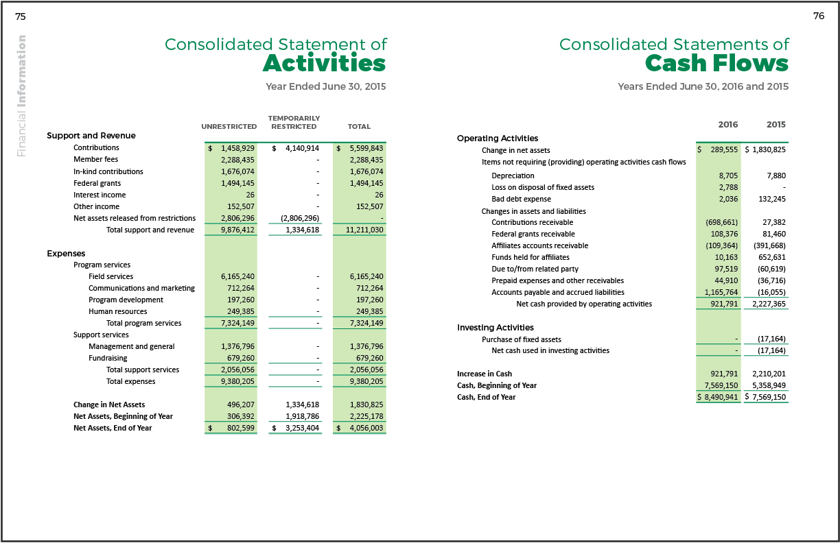 2016 Annual Report Financial-3.png