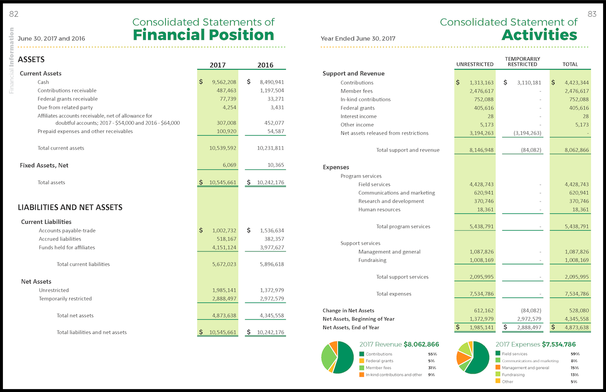 2017 Annual Report Financial-2.png