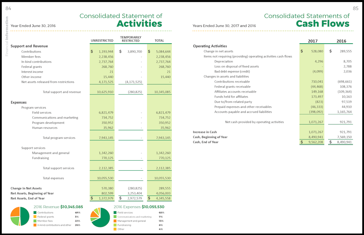 2017 Annual Report Financial-3.png