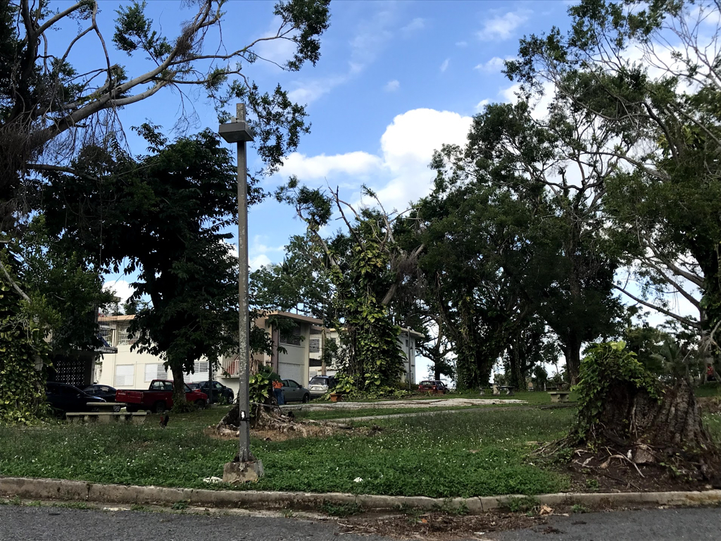 The seminary grounds and buildings sustained damage in the hurricane.