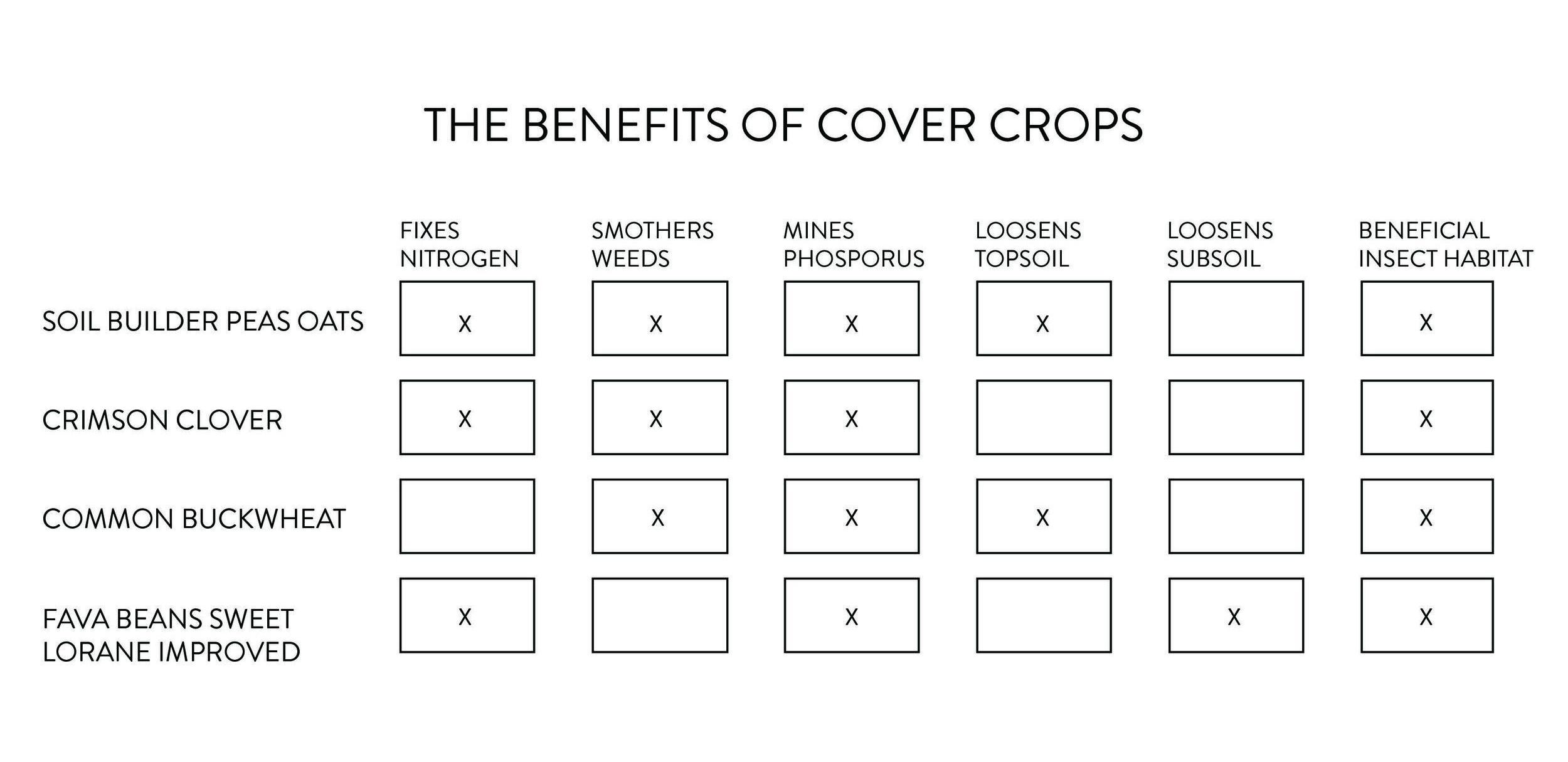 covercrop-benefits.jpg