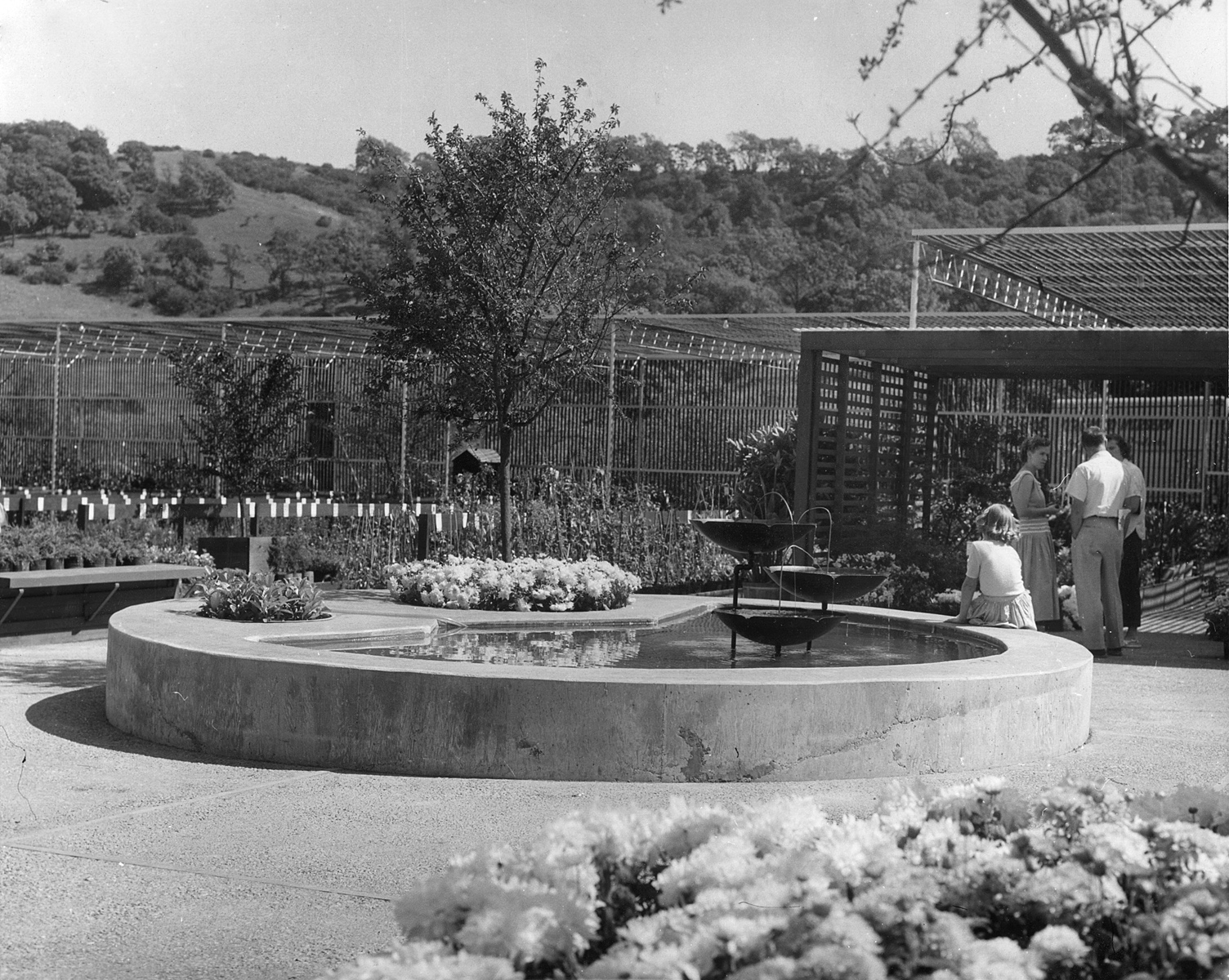 Ernest Wertheim created a seating area including the pond, inviting customers to stay awhile.