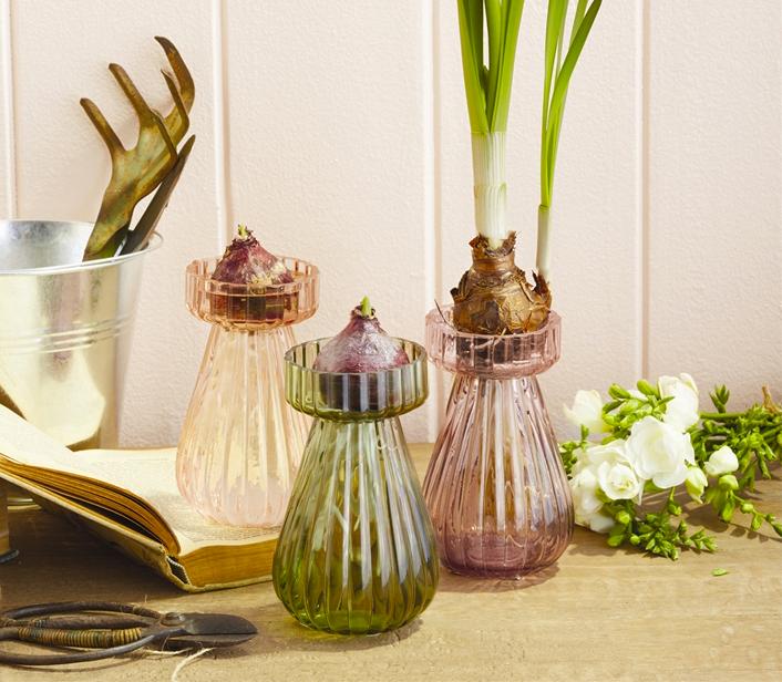 Handblown Bulb Forcing Glass Vase via  Elizabeth's Embellishments