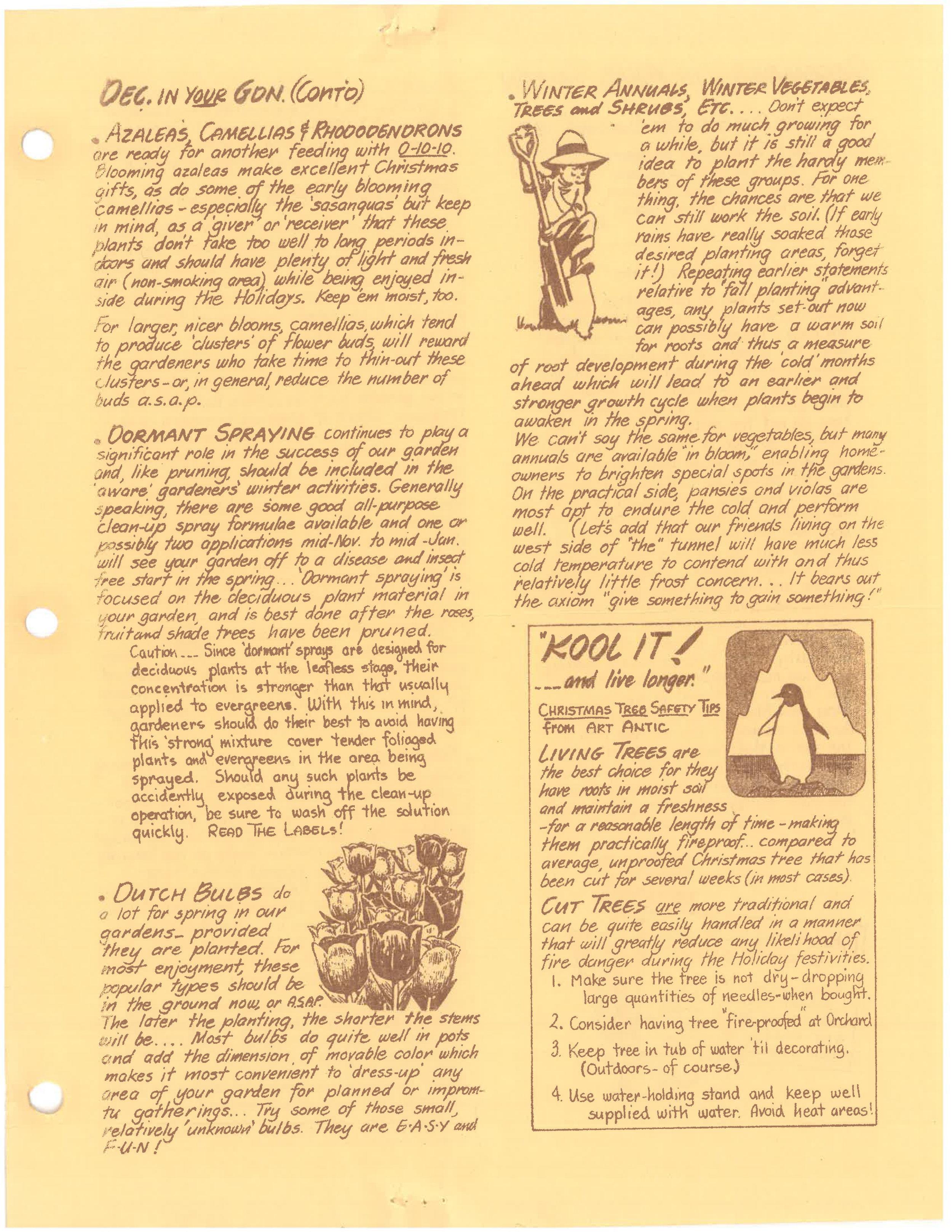 1985-newsletter-pg3.jpg