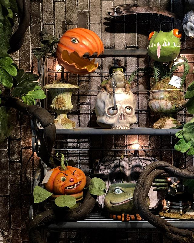 Halloween is up in the shop! Come view our spook-tacular displays!