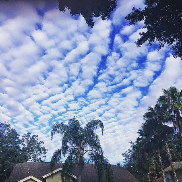 Nothing but beautiful skies from our friend in Florida. #WindowWatch
