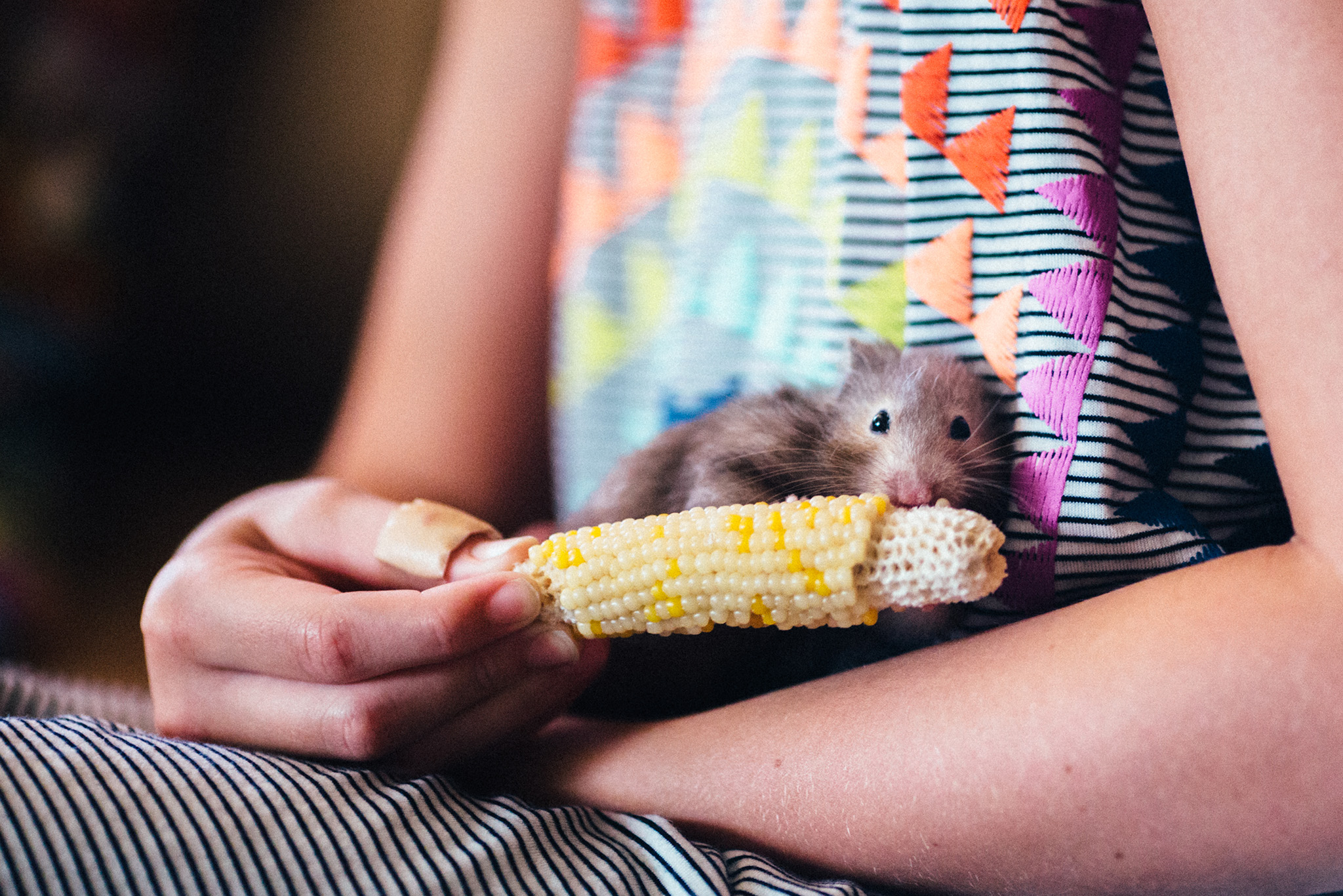 """August 6: To quote my sister-in-law, """"I'm not sure there's anything cuter than a hamster eating."""""""