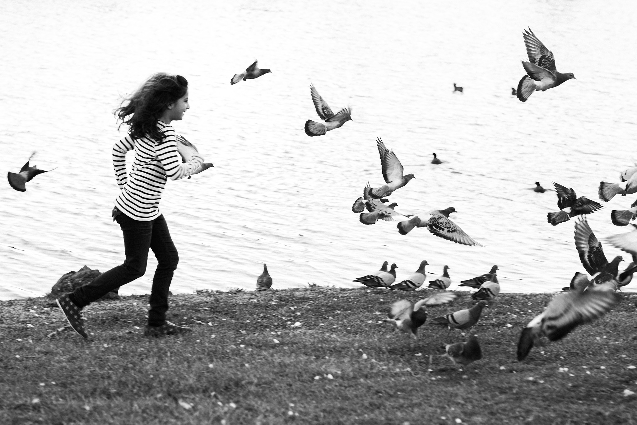 November 23: Reunited with my dear friends, and all Lucy wanted was a photo chasing the birds.