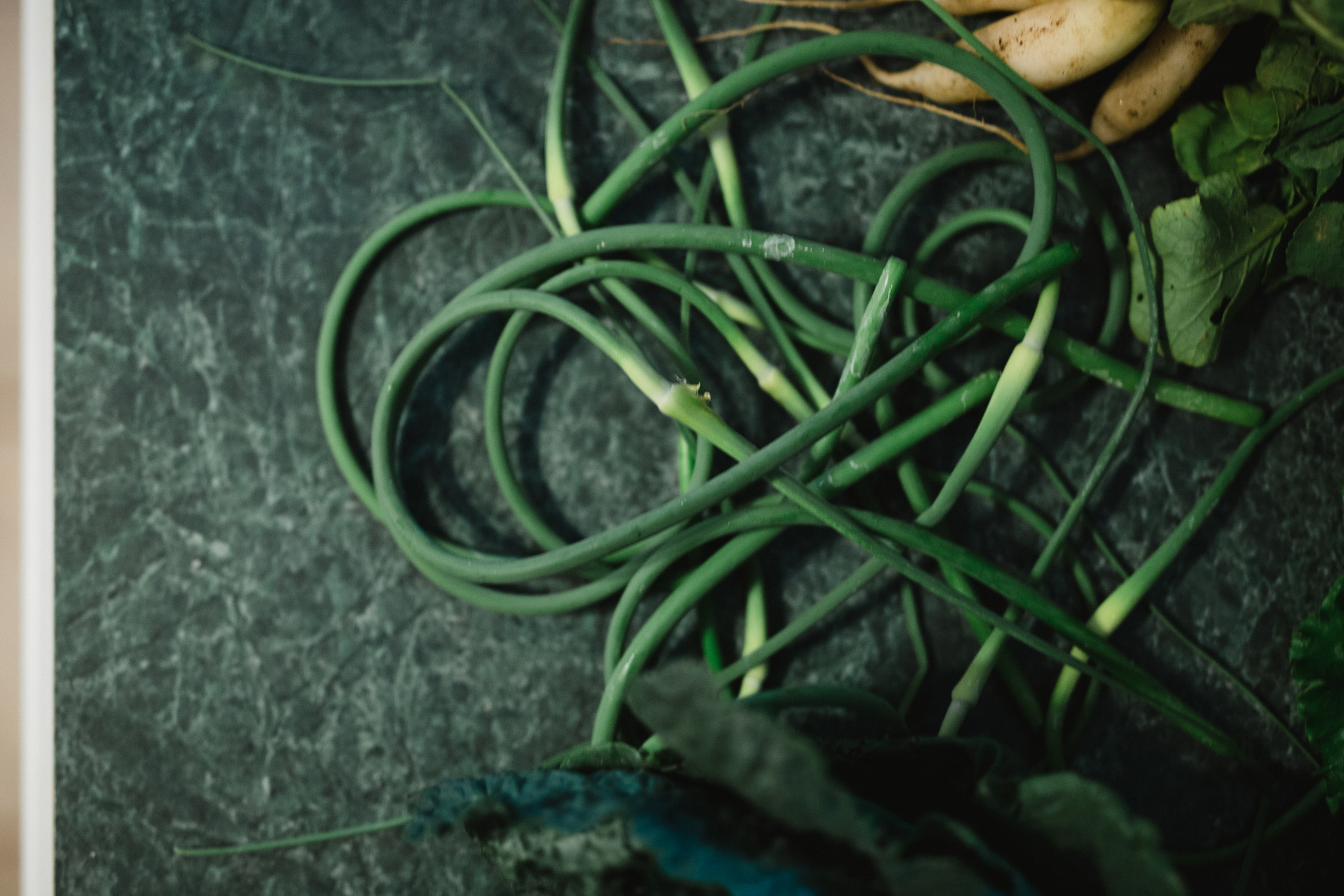 June 22: We joined a CSA and learned to cook with scapes.