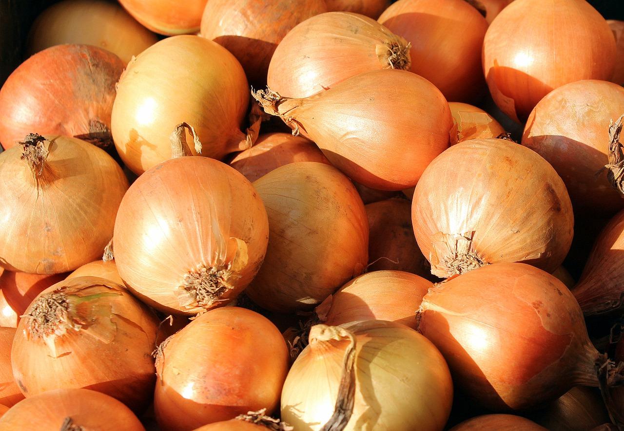 onion-3127137_1280.jpg