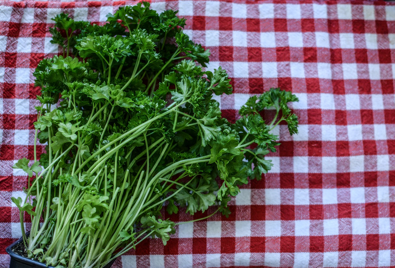parsley-2874348_1280.jpg