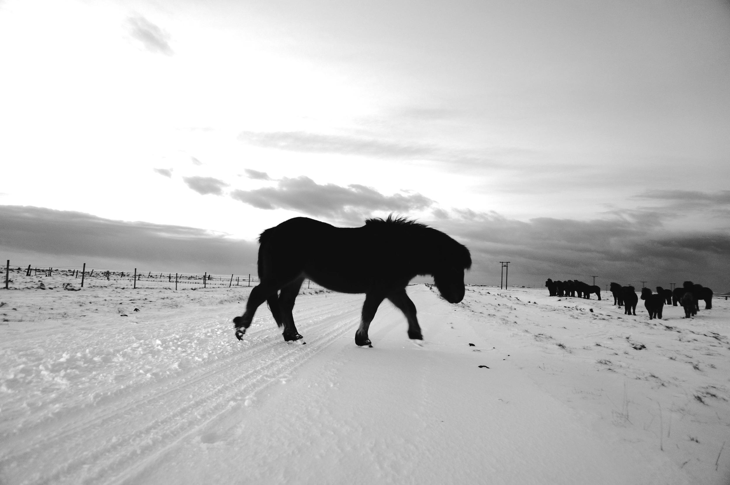 Akureyui, Iceland