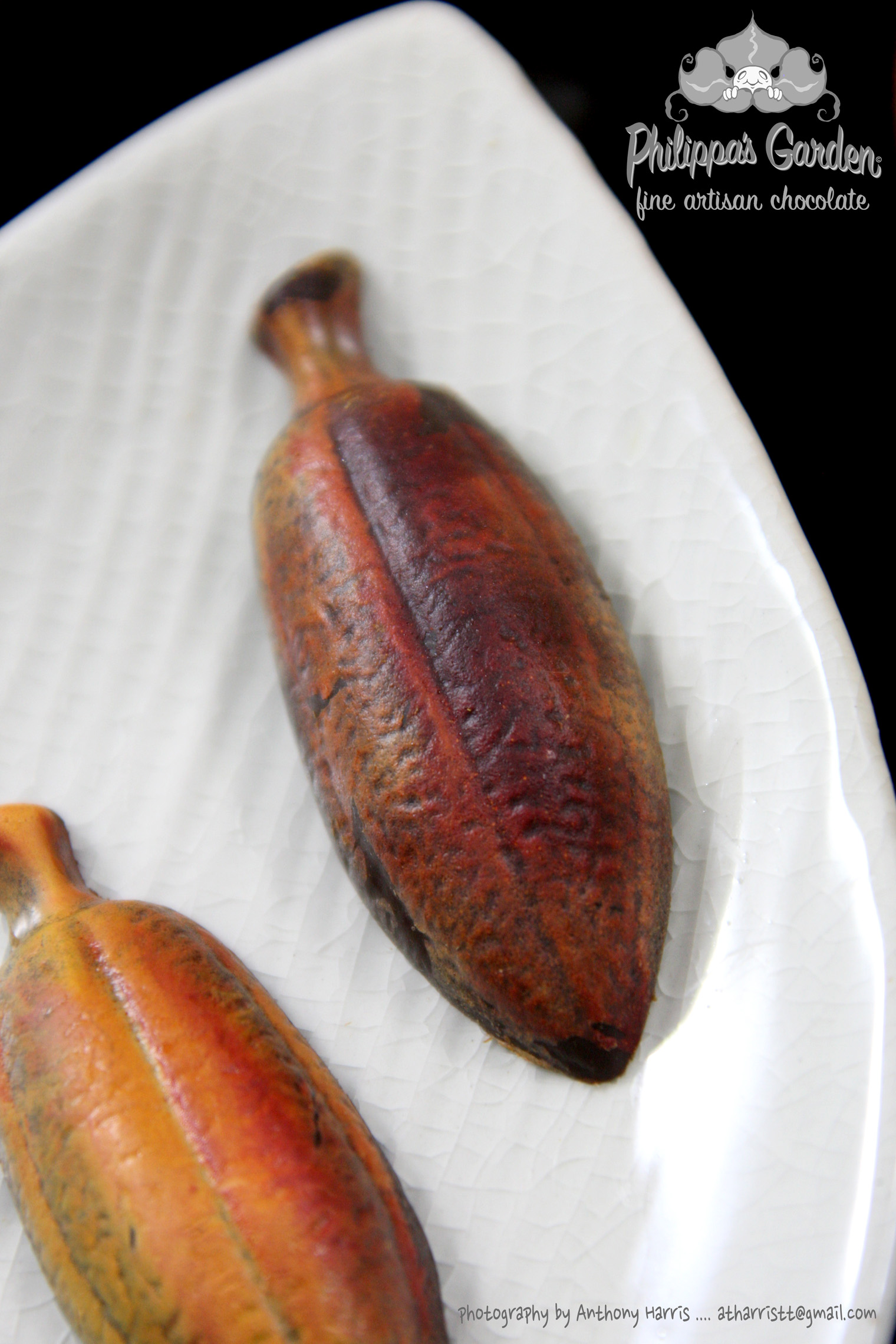 Signature Cocoa Pod (2).jpg