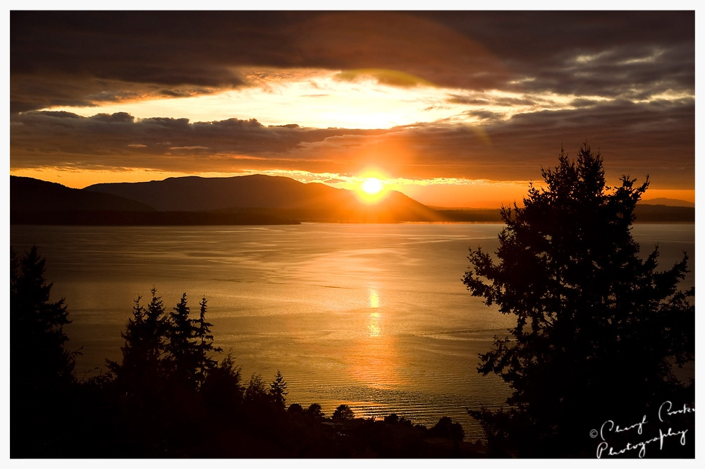 Golden Sunset on Bellingham Bay