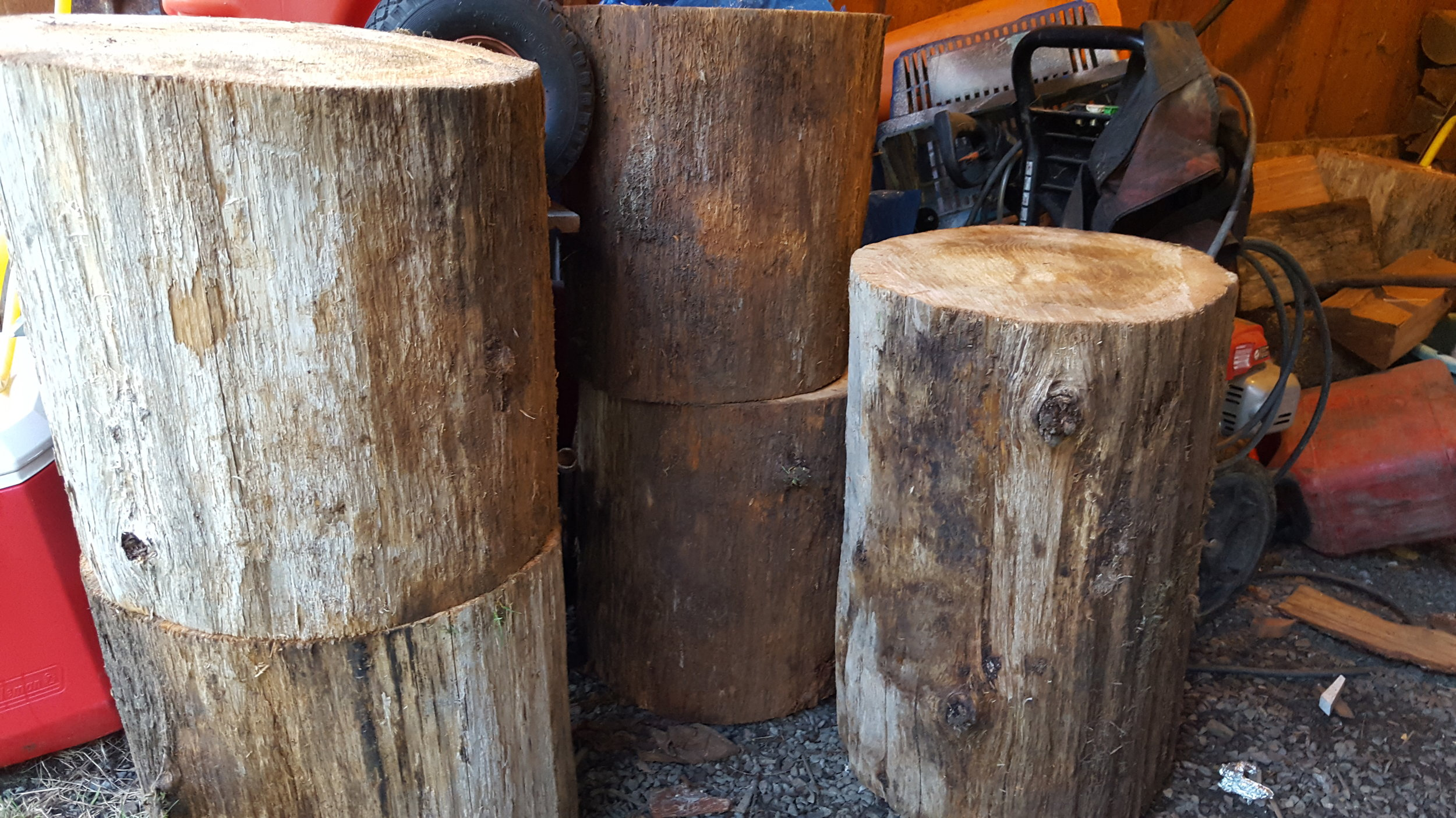 Cedar rounds will one day become end tables.