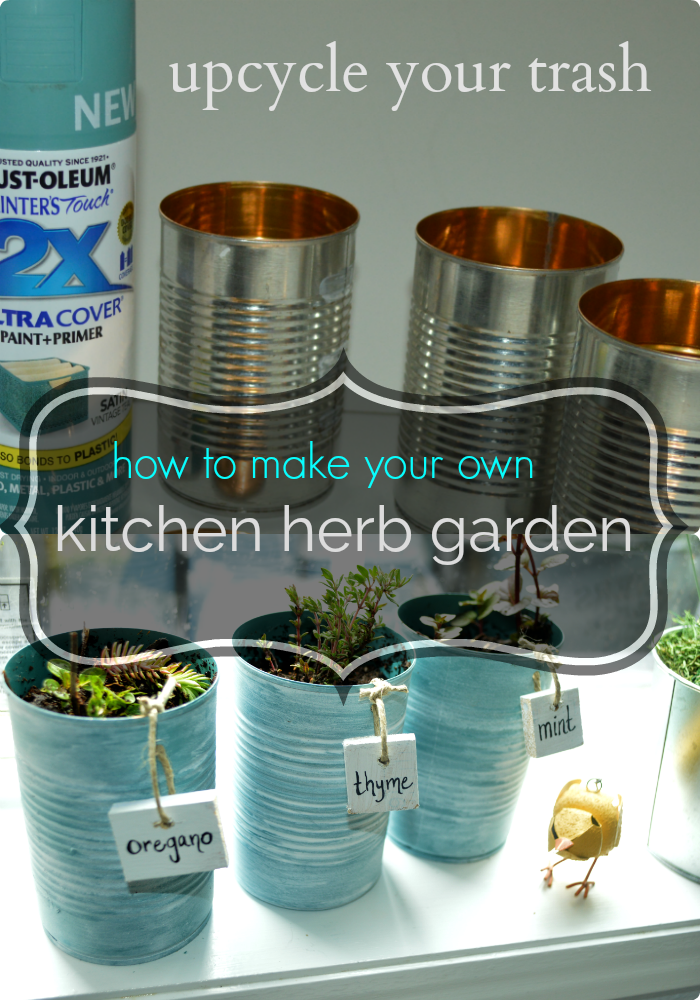 start an herbal garden in your kitchen with vegetable cans.png