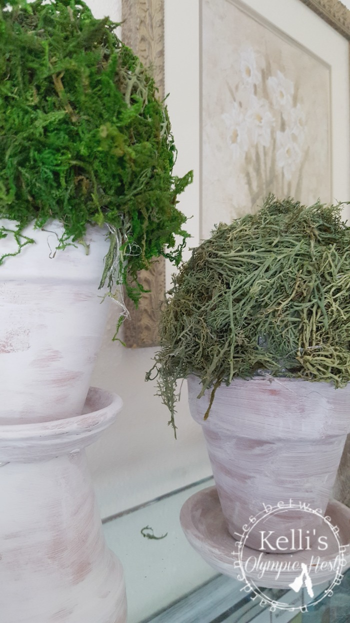 diy moss topiary and white washed terra cotta pots.jpg