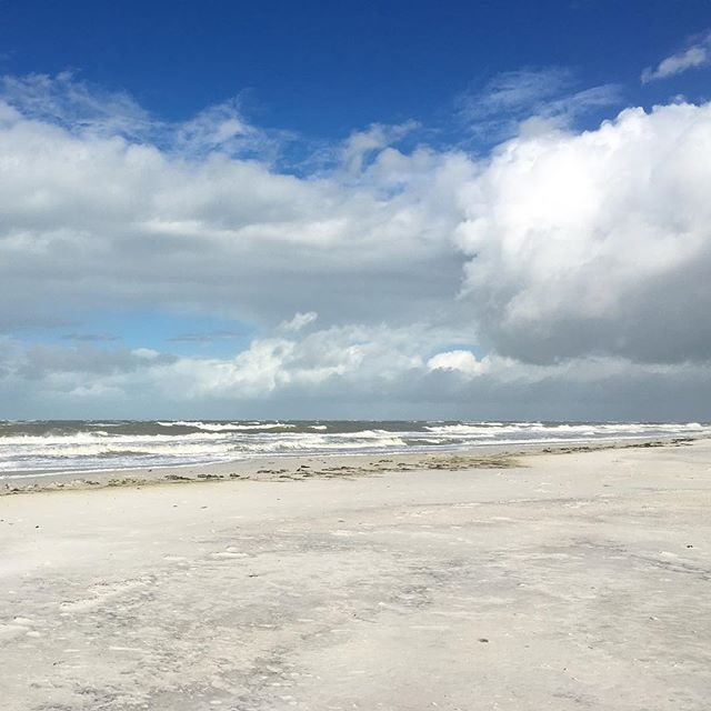 Waves on the west coast of #FabFlorida today