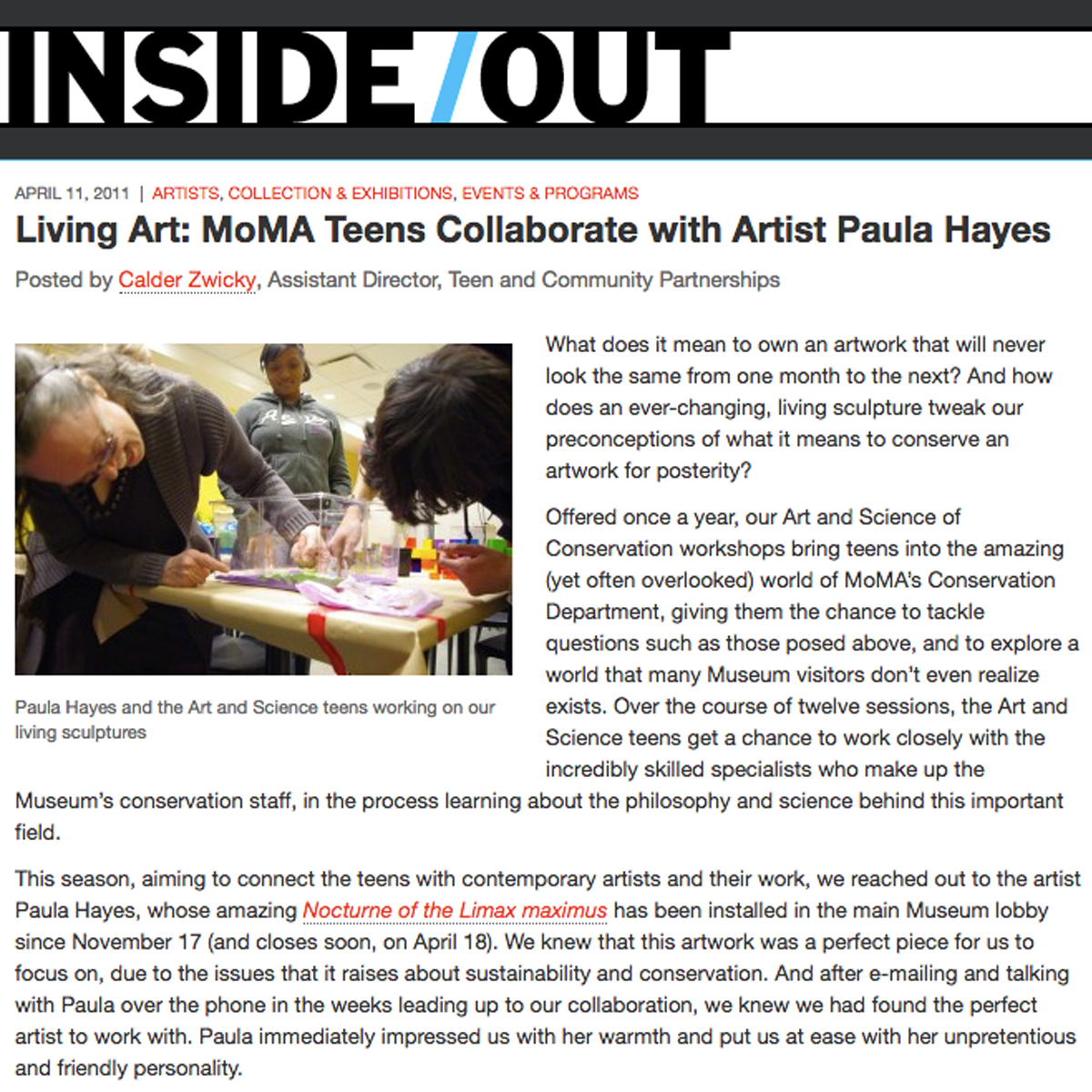 Living Art: MoMA Teens Collaborate with Artist Paula Hayes