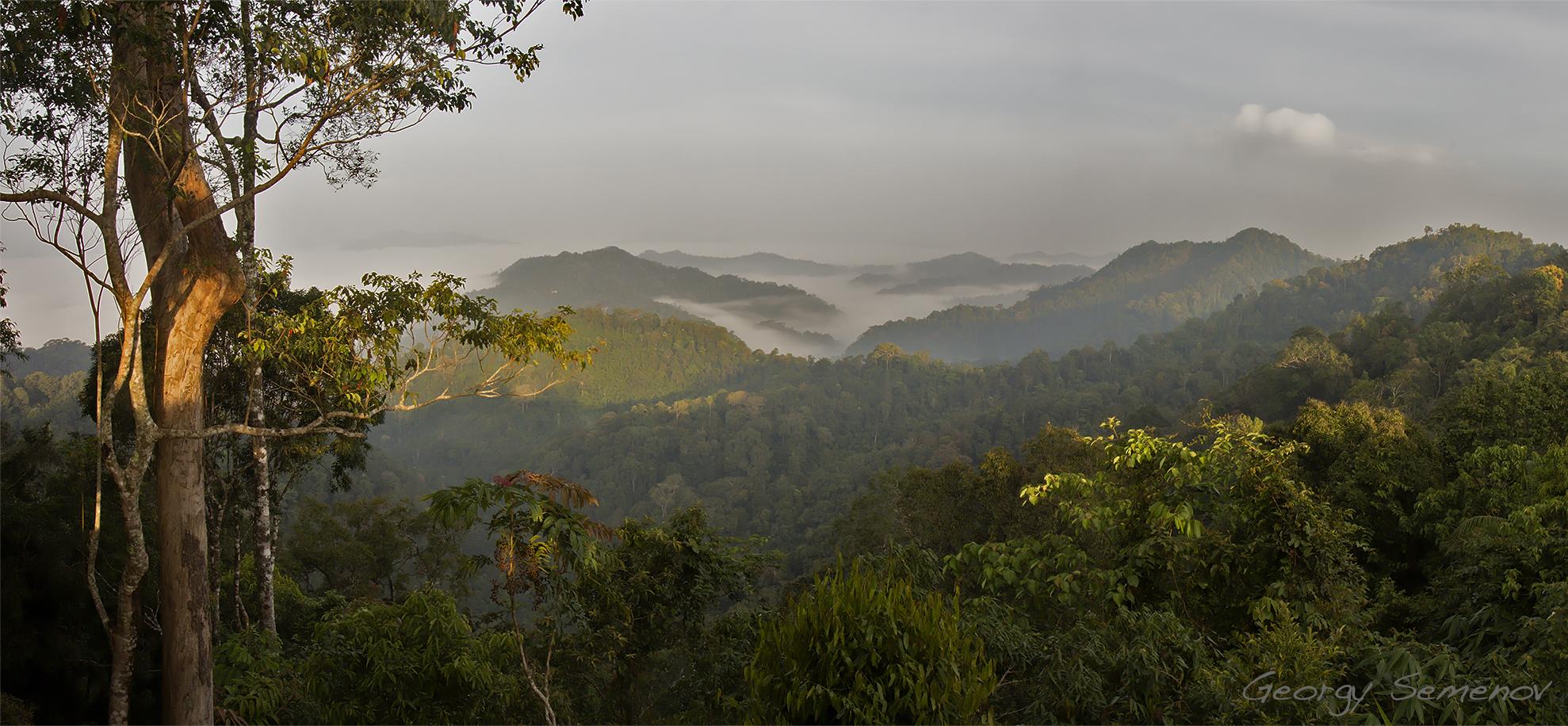 fog-over-myanmar_24663422693_o.jpg