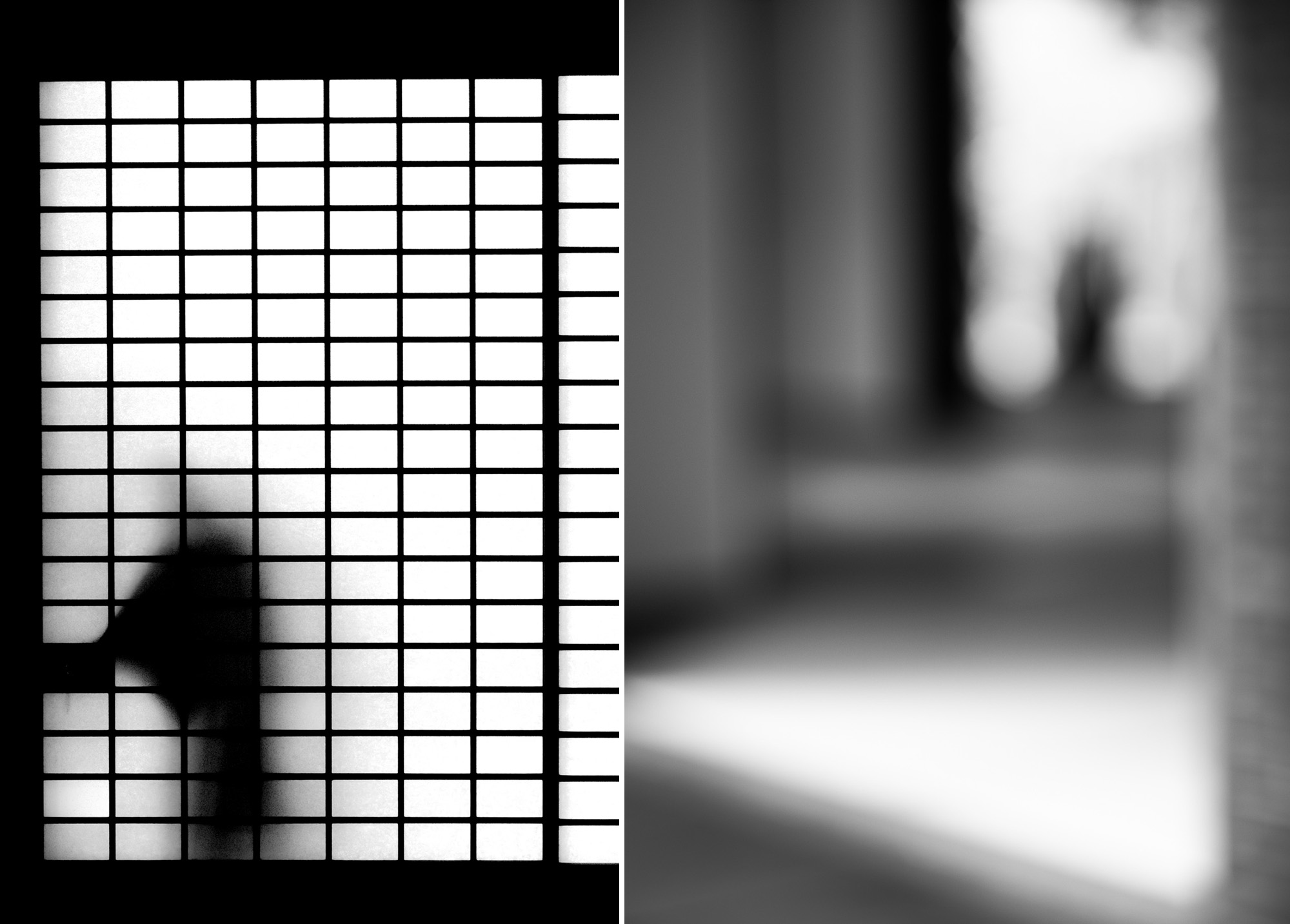 Thinking in shadows_ Kyoto